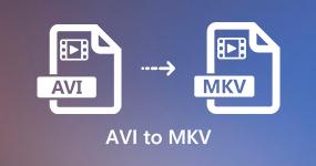 AVI MKV: lle