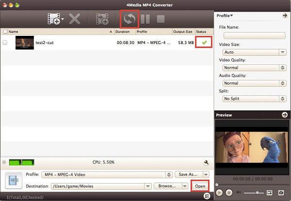 4Media MP4 -muunnin Macille