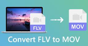 Muunna FLV MOV: ksi