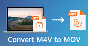 Muunna M4V MOViksi