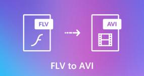 FLV AVI: lle
