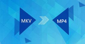 MKV MP4: lle
