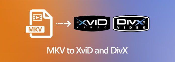 MKV to XviD and DivX