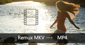 Remux MKV to MP4