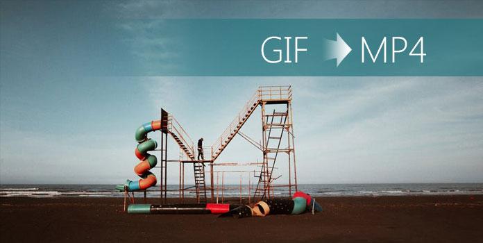GIF ja MP4