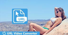 URL Video Converter