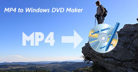 MP4 Windows DVD Makeriin