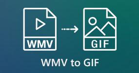 WMV - GIF