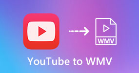 YouTube to WMV
