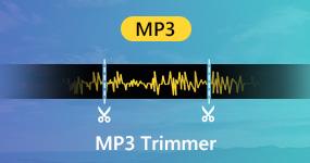 MP3 leikkurit
