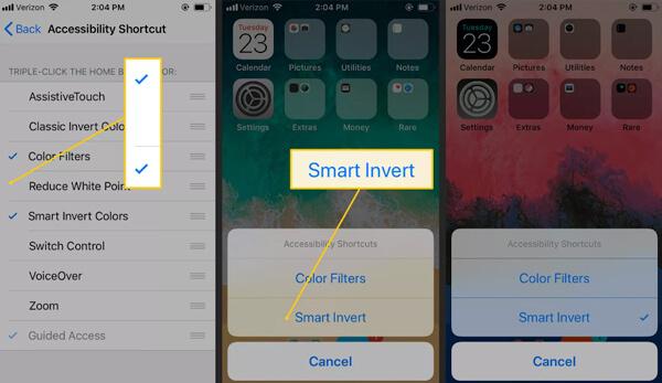 Smart Invert iOS