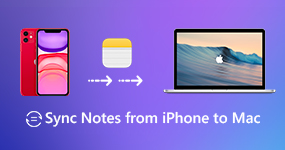 Sync Notes