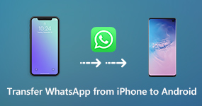 Transfer WhatsApp and Attachments from iPhone to Android