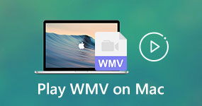 Play WMV on Mac