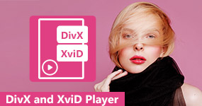 DivX and XviD Players