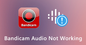 Bandicam-äänitiedosto ei toimi
