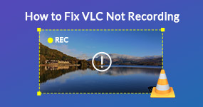 How to Fix VLC Not Recording
