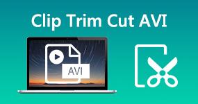 Leikkaa leikkaus AVI-tiedostoja