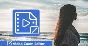 Video Zoom Editing Software