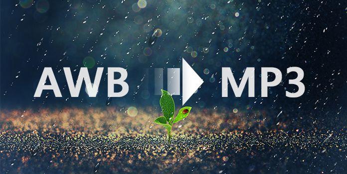 AWB в MP3