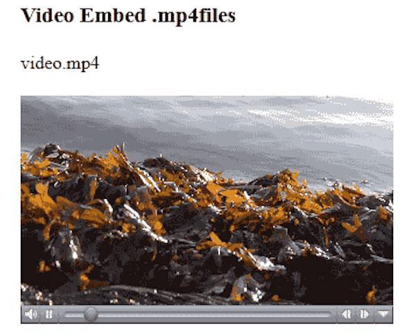 Upota MP4 HTML-muotoon