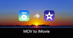 MVI - MP3